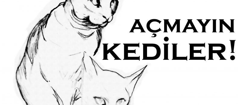 Kedi Uyarı Levhası